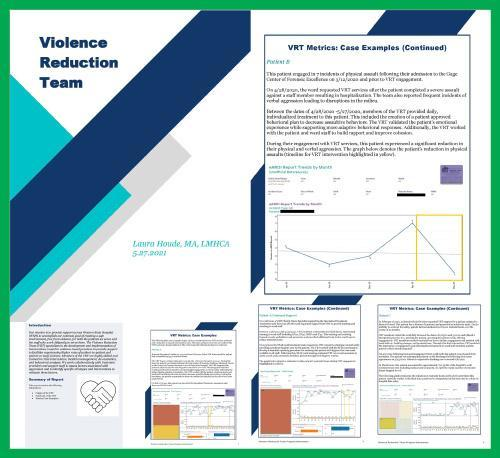 VRT report that showed a direct correlation between VRT services and a reduction in assaults